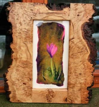 Crocus in the Wood